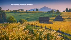 filed Ukrainian village
